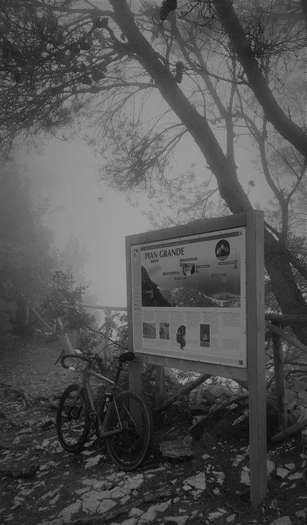 PERCORSI CICLOTURISTICI e piste ciclabili